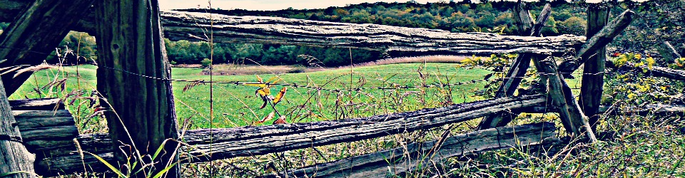 A cedar rail fence in Bolingbroke, in Lanark County, Ontario.